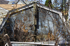 Old Shed (lefeber) Tags: wood trees newyork rural town shadows village branches shed worn weathered peelingpaint twigs smalltown hudsonvalley highlandfalls peacedalecemetery