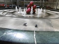 P1030695 (Mud Boy) Tags: nyc newyork fountain downtown manhattan financialdistrict batteryparkcity lowermanhattan 7worldtradecenter jeffkoonsballoonflowerred oversizedjeffkoonsballoonanimal