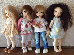 New Girls On The Block =^-^= (GILBERT's daughter ( --funambule-- )) Tags: fairyland ltf littlefeeante littlefeeleah littlefeeluna littlefeemio tanlittlefee