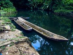 CURIARAS (alfonsomejiacampos. PLEASE READ MY PROFILE) Tags: carmencita curiaras delta rio orinoco venezuela