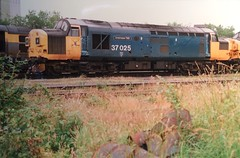 """37025 """"Inverness TMD"""" looking a bland mess at Warrington Arpley 11/07/96 (37686) Tags: 37025 invernesstmd looking bland mess warrington arpley 110796"""