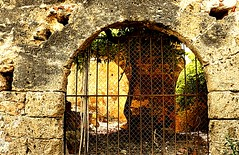 Ruinas (camus agp) Tags: ruinas piedra abandono maro espaa caadeazucar canoneos arco ventana
