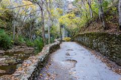 Natural Bridge State Park (vastateparksstaff) Tags: fall rockwall retainingwall path ada walkway creek moss