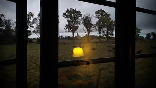 'God morgon Ängavallen' - #Ängavallen, #Skåne #Sweden #countryside #hotel #autumn #morning #eco #eko #ecological #sustainability