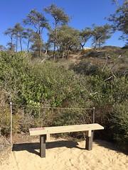 Torrey Pines State Natural Reserve (valeehill) Tags: torreypinesstatenaturalreserve torreypines park reserve sandiego bench