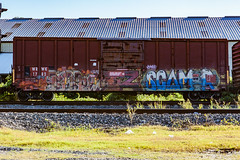 (o texano) Tags: houston texas graffiti trains freights bench benching scamr zee db