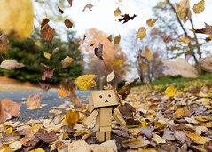 Autumn colors in the air (Arielle.Nadel) Tags: danbo danboard revoltech autumn fall leaves toyphotography yotsuba ariellenadel よつばと ダンボー