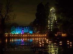 Glow Wild, the lantern trail in the gardens (Nanooki ) Tags: wakehurstplacegardens kew christmas nightphotography nighttime night lights lake frozen christmastree glowwild trail sussex westsussex long exposure livetime olympusomdem1