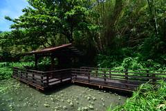 () Tags: taiwan    landscape  island