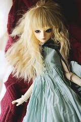 AIMG_0947 (Tinn Chun) Tags: bjd doll bluefairy tinyfairy robin
