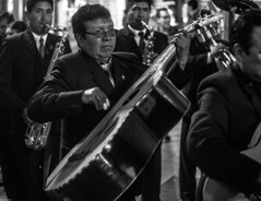 puno bass (juiceSoup) Tags: puno bolivia lake titicaca