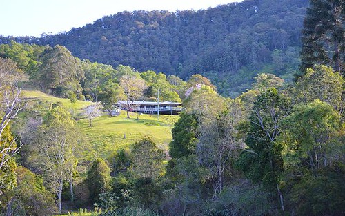 Upper Taylors Arm, Upper Taylors Arm NSW 2447