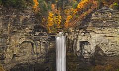 Beauty (Matt Champlin) Tags: fall autumn taughannockfalls falls waterfall amazing hope 2016 canyon gorge taughannock ithaca ny canon