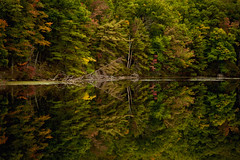 Repeated Refrains (SunnyDazzled) Tags: lake kanawauke harriman statepark newyork reflections evening nature landscape water mirror surface trees fall autumn foliage leaves forest shore shoreline
