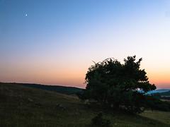 Der Mond ist aufgegegangen (Tobias Keller) Tags: 43 abend abendlicht bavaria bayern deutschland donauries dorf germany huisheim jahreszeit landschaft mond natur querformat schwaben seitenverhltnis sommer sonne sonnenuntergang sundown swabia village landscape moon nature romantic romantisch sunset sunsetlight sunshine geocountry camera:make=panasonic geocity exif:isospeed=160 geostate geolocation geo:lat=48819811984625 exif:focallength=21mm camera:model=dmcg5 exif:lens=lumixgvario1442f3556 exif:aperture=80 geo:lon=10714393066683 exif:model=dmcg5 exif:make=panasonic