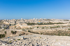 Jerusalem seen from the Mount of Olives (davidthegray) Tags: view mosque blue olives mount jews wall alaqsa jerusalem zion temple israel panorama tombs cemetery esplanade