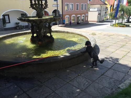 2016.07.16 063 Lendorf Kärnten
