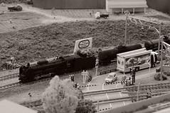 JNR D51 (Touhoku ver.) + TAKI3000 (kiha581523) Tags: nikon d90 nikkor 1685 monochrome train railway zug eisenbahn freight cargo d51 taki kato 1150 scale model