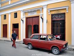 le marron (Brown)de Cuba (pontfire) Tags: