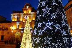 Con sabor de mazapán (Jesus G.A.) Tags: navidad arbol prazamaior ourense galicia españa nocturna street
