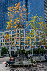 Vancouver, British Columbia, Canada (April 2016) (*Ken Lane*) Tags: can geo:lat=4928782285 geo:lon=12311383903 geotagged vancouverwaterfrontcoalharbourcanadaplace westend bc britishcolumbia britishcolumbiacanada canada canadiancity canadianseaportcity cityofvancouver ciudad coastalseaportcity gastown kanada northamerica pacificnorthwest seaportcity stad stadt vancouver vancouverbc vancouverbritishcolumbia vancouverbritishcolumbiacanada vancouvercanada vancouvercity vancouverite westcoast yvr               28300 nikond800 nikon28300 nikon28300vr