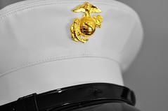 week 15 (chelseymarie) Tags: usmc marine military cover ega 2012 unitedstatesmarinecorps week15 dressbluescover week15theme 522012 52weeksthe2012edition weekofapril8