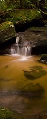 Yellow Sands (edwinemmerick) Tags: longexposure 20d water canon eos waterfall moss rocks stream australia bluemountains le nsw slowshutter edwin lawson emmerick edwinemmerick