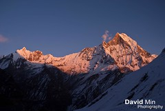 Annapurna, Nepal - Mount Machapuchare @Sunset (GlobeTrotter 2000) Tags: nepal winter sunset camp vacation mountain snow cold tourism ice expedition trek climb asia adventure mount explore climbing summit abc himalaya exploration everest range pokhara base annapurna sanctuary machapuchare nepalpokharamountaintrekanapurnahimalayaeverestsanctuary nepalpokharamountaintrekanapurnahimalayaeverestsanctuarylandscapebasecampabc