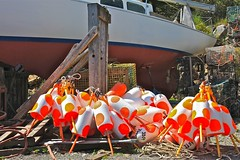 Jazzy Lobster Buoys! (smilla4) Tags: sailboat polkadots lobstertraps lobsterbuoys buoyant bassharbormaine thurstonslobsterpound