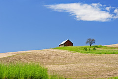 Your Soul is Alive (Northern Straits Photo) Tags: green clouds barn spring fields wa grasses blueskies palouse easternwashington northernstraitsphotography somewhereonabackroad