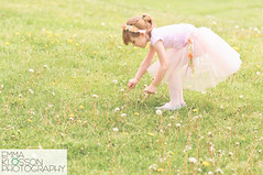 A Field of Wishes (emma klosson) Tags: flowers ballet girl dance ballerina child dressup wishes tutu dandelions pasteltones girlpickingflowers childpickingflowers