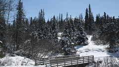after snow - late may (CB in AK) Tags: bridge snow mountains alaska spring flattop spruce chugach