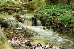 Small Cascade from my Magical Mystery tour today (vanstaffs) Tags: landscape woods stream cascade