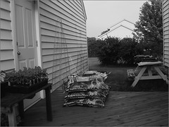 Yardwork (joeldinda) Tags: flowers bw yard garage deck dirt yardwork picnictable joeldinda c50