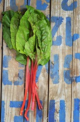 mangold (Zoryanchik) Tags: light food baby plant green cooking wet water grass vertical garden wooden leaf salad drops healthy raw natural bright eating background board group cook plate bowl vegetable fresh delicious health vegetarian backgrounds produce organic diet freshness nutrition wellness dieting ingredient mangold