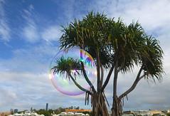 Sky with Spectrum (Patricia Woods) Tags: sky bubbles brisbane bubble bulimba