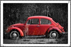 Red Punch Buggy V2.0! (The Bear Den) Tags: the peoples car 19382003 2013 abandoned abandonedalberta abandonedautomobile abandonedcanada alberta auto autograveyard automobile automobiles autos backroadsofalberta backroadsofcentralalberta bug canada cars countryroads derelict ferdinandporsche grass handheld havecamerawilltravel historicalalberta justpentax kalynacountry käfer neglect neglected over21millionmanufactured pentaxk20d prairie punchbuggy red redpunchbuggy roadslesstravelled rural ruraldecay strathconacounty thebearden trees vw vehicle vehicles volkswagenbeetle volkswagenbug volkswagentype1 cans2s smcpentaxda55300mmf458ed explore explored interestingness