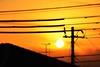 Setting Sun Today (hidesax) Tags: roof sunset sky orange sun silhouette yellow japan clouds wire nikon utility pole saitama nikkor antenna ageo frommybalcony hidesax nikkor70200mmf28gedvrii d800e nikond800e settingsuntoday
