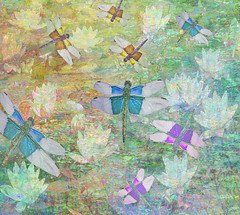Where dragonflies glow (virtually_supine) Tags: painterly photomanipulation dragonflies creative vivid textures waterlilies montage layers colourful naiveart digitalmanipulation pse9 photoshopelements9 kreativepeopletreatthis79challenge dragonflybyxamdram pse9effectsaccentededgespaintdaubs texturelayerssandandseascrawl1blossomreflectiononwater