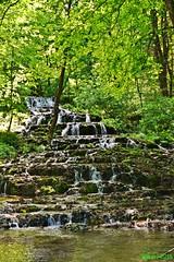 DSC_0141 wb (bwagnerfoto) Tags: trees summer green nature forest waterfall nationalpark hungary wasserfall termszet szilvsvrad vzess szinvavlgy