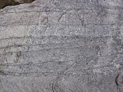 Baraboo Quartzite (upper Paleoproterozoic, ~1.7 Ga; Tumbled Rocks Trail, Devil's Lake State Park, Wisconsin, USA) 1 (James St. John) Tags: park lake rocks state south devils trail ranges range quartzite baraboo precambrian tumbled paleoproterozoic proterozoic