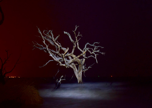 Light painting on Driftwood Beach