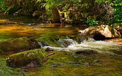 DSC_1731-Edit (zeiberc) Tags: outdoor nature streams mountains on1 nikond3300googleniknatureon1springtopazadjustdejpegd3300nikkor55300
