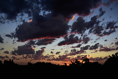 Spring clouds (Dreaming of the Sea) Tags: nikon d7200 dusk trees twilight sunset tamronsp2470mmf28divcusd bluesky palmtrees redsunset clouds 2016 october storm 500v20f flickrelite topf25 1000v40f 1500v60f