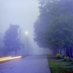 (Patrick J. McCormack) Tags: hasselblad 500cm kodak ektar fog mist analog 6x6 film glow morning dawn