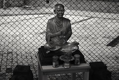 Bangkok Mourns (jcbkk1956) Tags: monk figure holy buddhism buddhist statue mono blackwhite bangkok thailand mourning nikon d3300 nikkor 35mmf18dx offerings fence dof