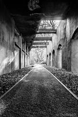 20161106 - Flickr-ThoBra69 - 002.jpg (ThoBra69) Tags: berlin sdgelnde schwarz weiss licht schatten tunnel gang lichtundschatten