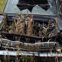 DSC_0412 v2 v2 (collations) Tags: ontario mcleansautowreckers autowreckers wreckers automobiles autos abandoned rockwood derelict junkyards autograveyards carcemeteries