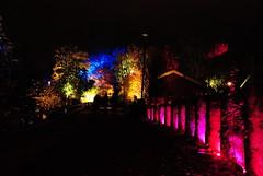 Lights in Alingss 1 (Bettysbilder) Tags: night lightsetting ljussttning ljusdesign kvllsfoto lights nightphotos