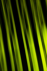 Like painted (tom.leuzi) Tags: 50mm architektur bern berne canoneos6d langzeitbelichtung sigma50mmf14dghsmart sigmaart abstract architecture colors f14 longexposure green yellow grn gelb liebefeld kniz hss sliderssunday icm